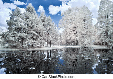Landscape forest and the lake, infrared photo - Blue...