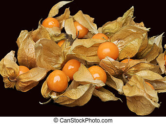 Cape gooseberry (physalis) isolated on black background