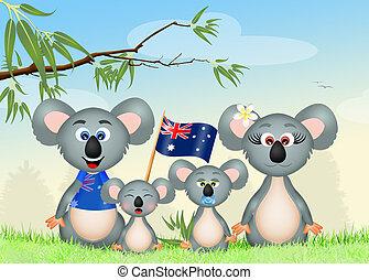 familia,  Koalas