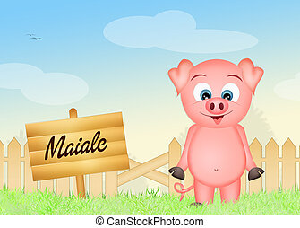 pig - illustration of pig