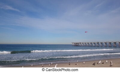 Rescue helicopter, seagulls and ocean waves on the Hermosa...