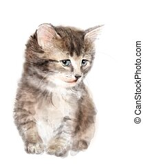 Fluffy kitten.  Imitation of watercolor painting.