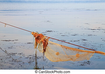 Empty fishnet for mussel in the sea at sunset