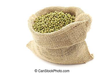 Mungo beans (Vigna radiata) in a burlap bag on a white...