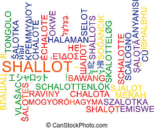 Shallot multilanguage wordcloud background concept -...
