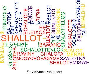 Shallot multilanguage wordcloud background concept -...