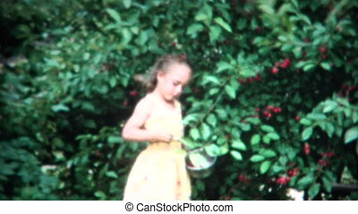 8mm Film Girl Picking Cherries - A unique vintage 8mm home...