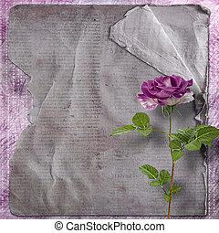 hermoso, pintado, rosa, con, marcos, para, felicitaciones,...