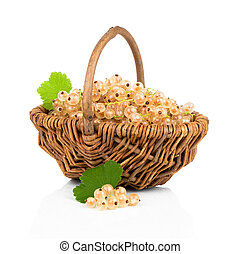 White currant fruit in a wicker, isolated over white...