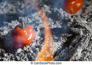 Habanero - This is a graphic depiction of how hot these...