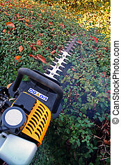 hedge cutting petrol cutter - hedge cutter trimming. petrol...