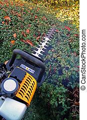 hedge cutting petrol cutter - hedge cutter trimming. petrol...