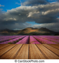 Beautiful landscpae of lavender field leading to mountain range with dramatic sky with wooden planks floor