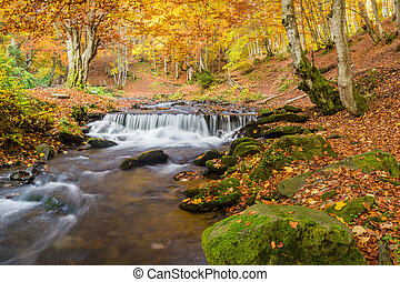 Beautiful autumn waterfall