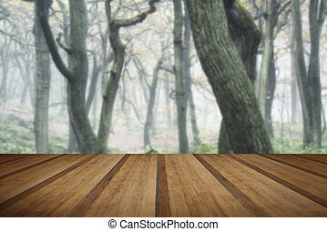 Landscape of forest with dense fog in Autumn Fall with wooden planks floor