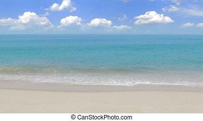 tropical beach wuth white sand