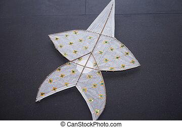A Thai traditional kite