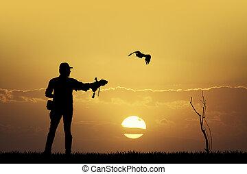 falconry - illustration of falconry