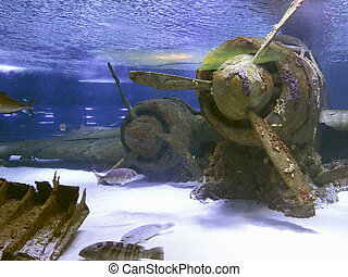 Drowned vintage aircraft at the bottom of the sea - Old...