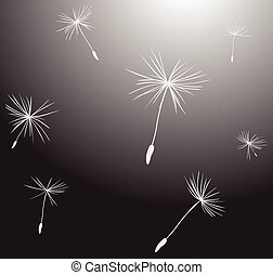 silhouettes of dandelion seeds in the wind
