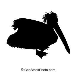 black silhouette of pelikan