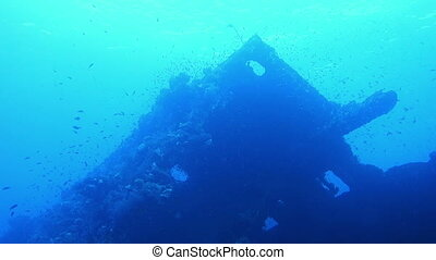 old shipwreck Carnatick in the Red Sea