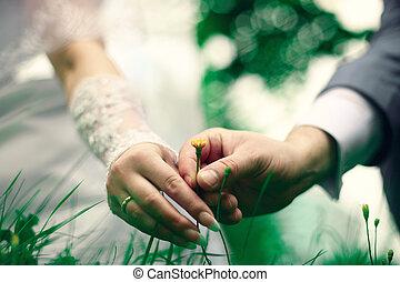 Wedding in summer, summer flower