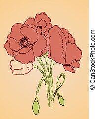 Poppy Flowers Sketch