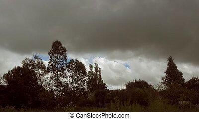 Timelapse, thick clouds over trees - Timelapse with thick...