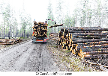 Timber truck on swedish dirt road - Timber truck just...