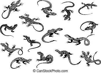 Black lizards reptiles for tattoo design - Black lizards or...