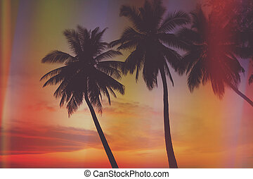 beautiful tropical sunset - Vintage stylized beautiful...