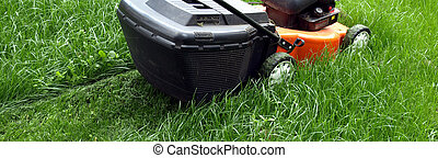 Mowing a lawn - Close-up of mowing a green lawn with new...