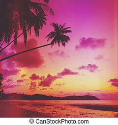 Tropical beach with palm tree at sunset, Thailand Retro...