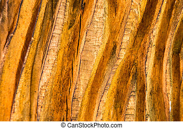 deep grooved wood texture background