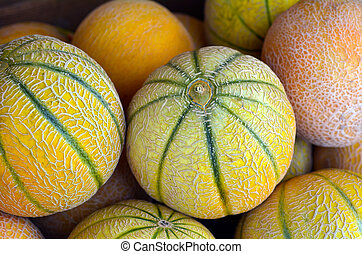 Cantaloupe melons on display in the market. Food background...