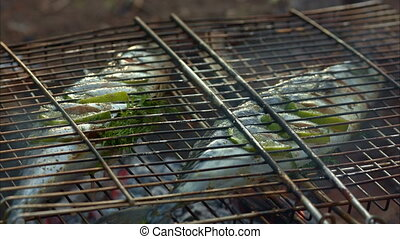 Hot fish on a grilling pan - Grilling fish on campfire...