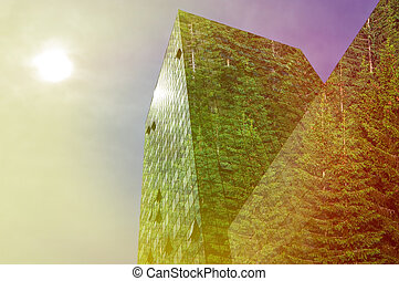 modern building covered with spruce