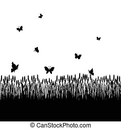 cereal field - silhouettes cereal and twigs of plants with...