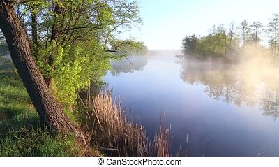 panoramic view of the river with morning mist