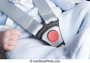 bebé, asiento, cinturón