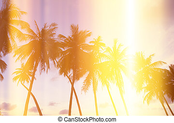 Palm trees on tropical shore at sunset, stylized with film...