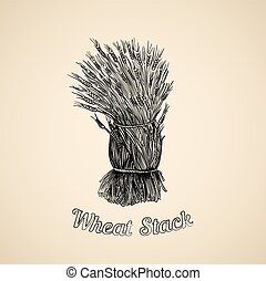 Bunch of wheat - Vector illustration of hand drawn stack of...