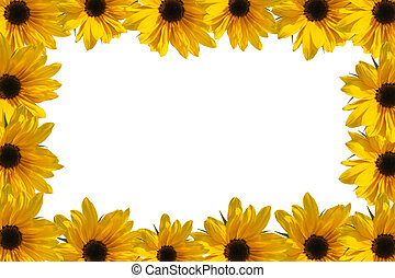 Flower frame - Yellow frame of blooming sunflowers with copy...