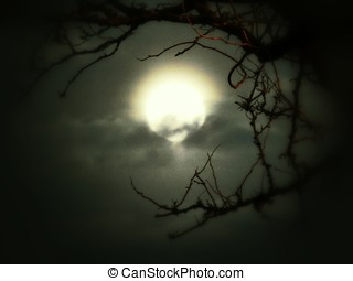 Haunting Moon - Haunting image of the glowing, clouded moon...