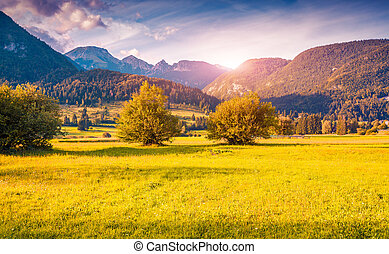 Colorful autumn morning in the Triglav national park,...