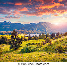 Colorful summer sunrise on the Bohinj lake in Triglav...