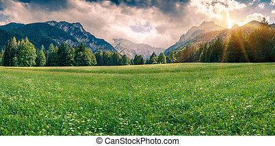 Panorama of Triglav mountain range Cloudy summer day in the...