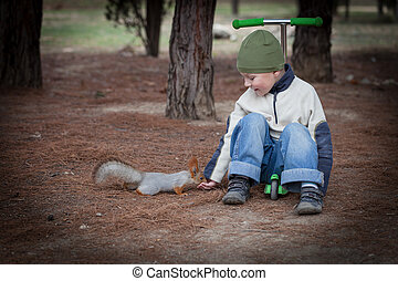 Boy feeds a squirrel from hands in the woods