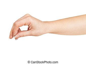 female hand holding something isolated on white background
